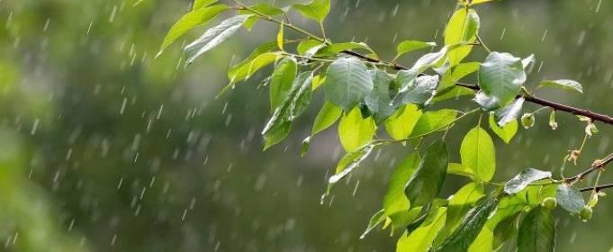 Pogoda w Polsce na 19.05.2020