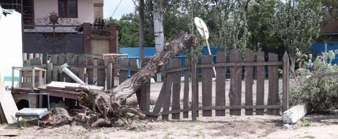 Смерч в Бердянську повалив дерева та пошкодив будинки