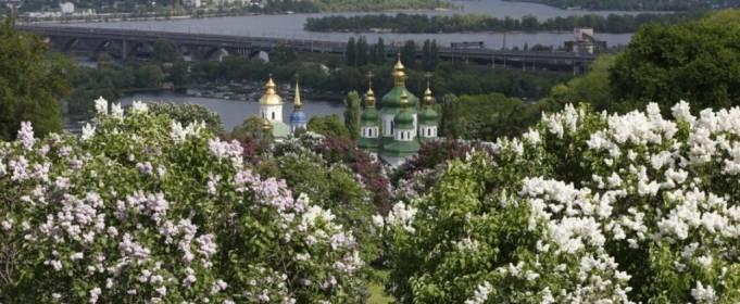 Май 2020-го стал самым холодным в Киеве за двадцать лет