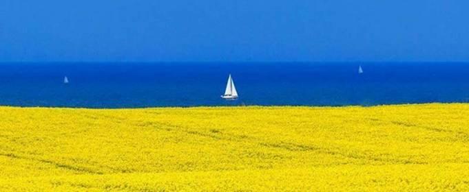 Топ-10 морських курортів України