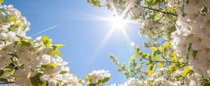 Погода в Украине на вторник, 9 июня