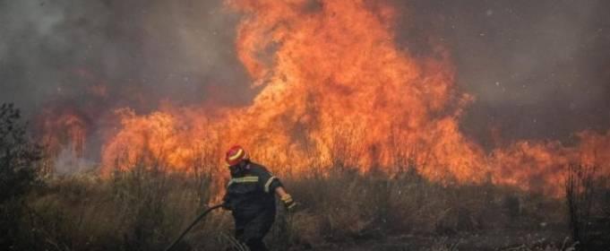 В Греции на Афоне бушует лесной пожар