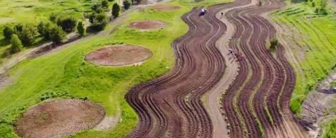 У Київській області з'явиться лавандове поле