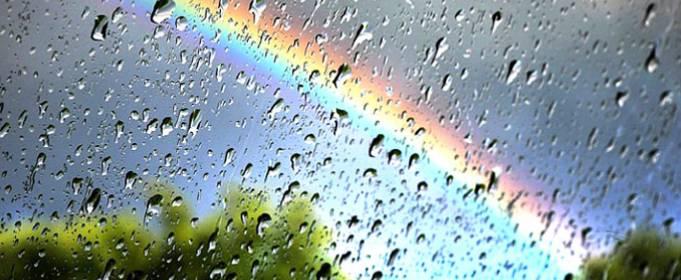 Погода в Украине на понедельник, 15 июня
