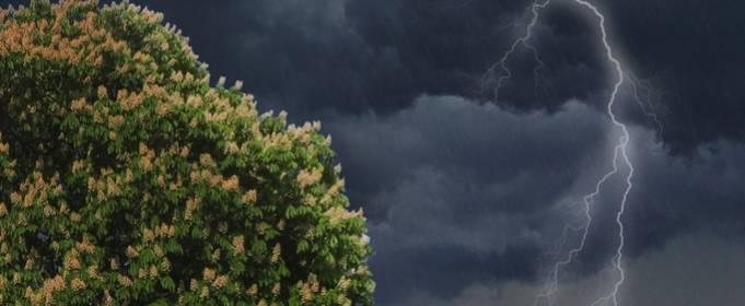 Погода в Украине на четверг, 18 июня