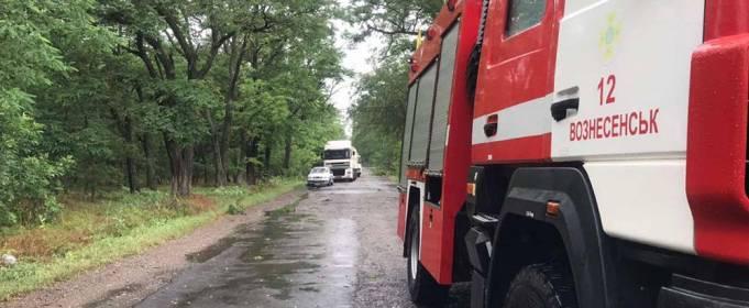В Николаевской области непогода повалила деревья