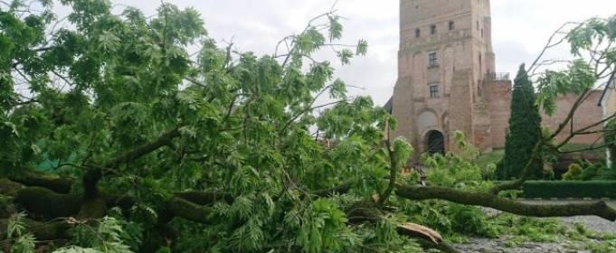 В Луцке непогода уничтожила достопримечательность