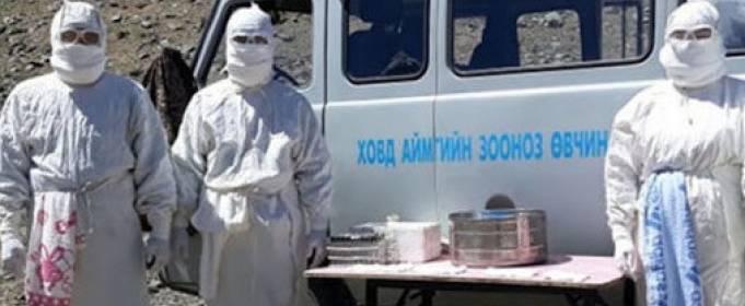 В Западной Монголии ввели карантин из-за бубонной чумы