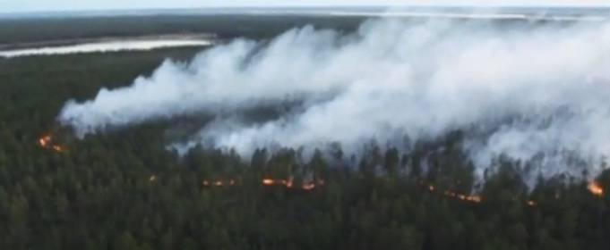 Сибирь охватили масштабные лесные пожары