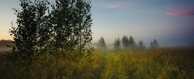 Погода в Україні на понеділок, 6 липня