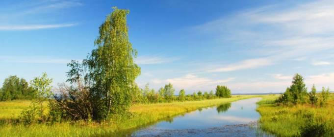 Погода в Украине на пятницу, 10 июля