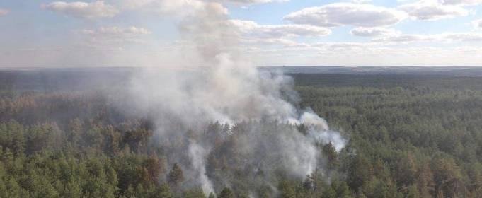 Пожежу в Луганській області локалізовано