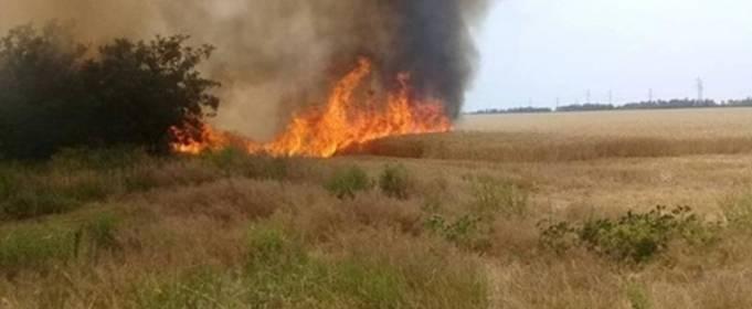 В Николаевской области горел лес, в Полтавской – ячменное поле