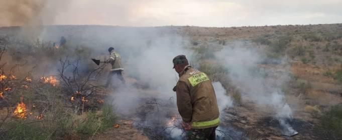 У Казахстані ведуть боротьбу з природними пожежами
