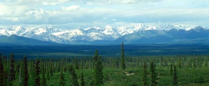 Увеличение количества осадков на Аляске угрожает вечной мерзлоте