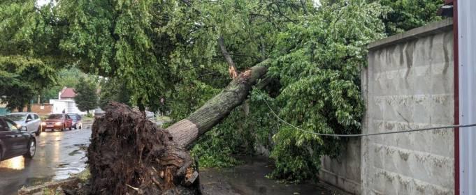 Затопленные улицы, поваленные деревья. Непогода бушевала в Ивано-Франковске и Хмельницком