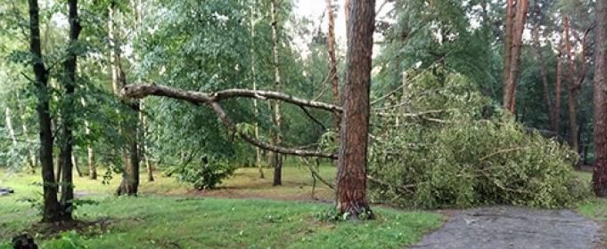 По Шепетовке пронесся ураган