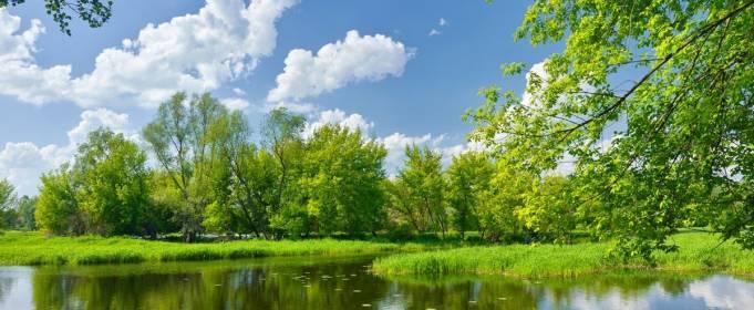 Погода в Украине на понедельник, 3 августа