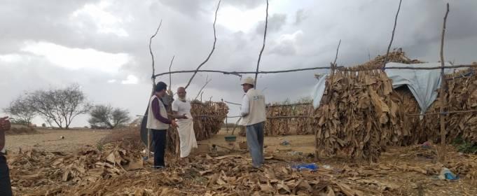 В Йемене из-за наводнений погибли 20 человек
