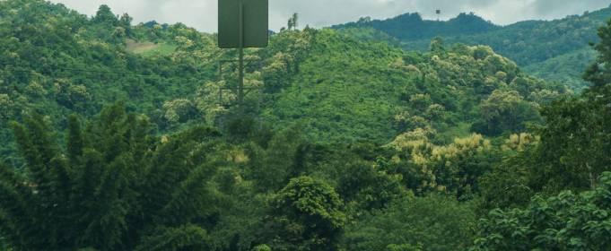 В Новой Зеландии протестируют первую систему беспроводной передачи энергии