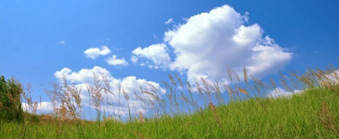 Погода в Украине на пятницу, 7 августа