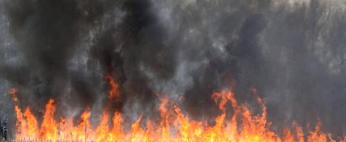 Вокруг Киева вспыхивают пожары