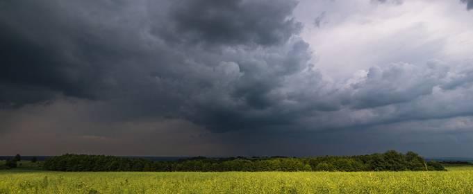 Pogoda w Polsce na 20.08.2020