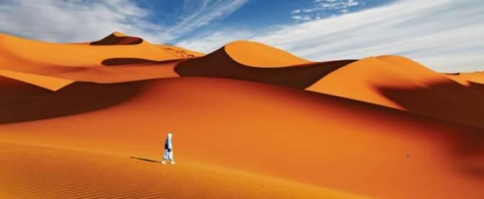 Сахара стала причиной засухи в других регионах