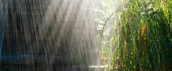 Погода в Україні на вівторок, 25 серпня