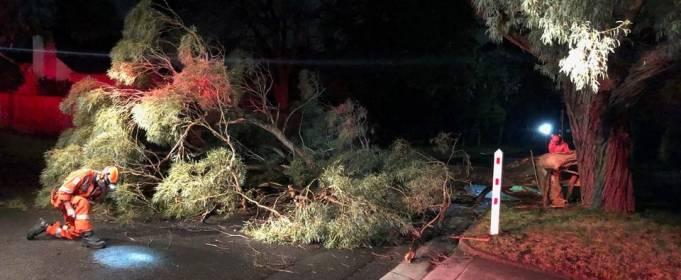 В Австралии 3 человека погибли из-за штормов