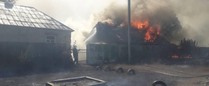 В Харьковской области лесной пожар перекинулся на село, уничтожив 8 домов