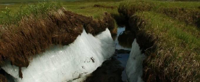 Прошедшее лето стало рекордно теплым в Северном полушарии