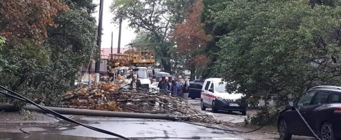 В Одессе сильный ветер повалил столб на автомобиль
