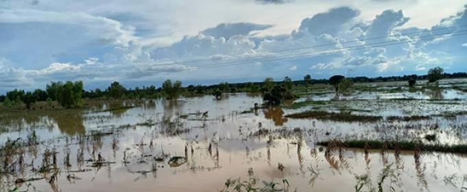 Наводнения уничтожают посевы и дома на севере Нигерии