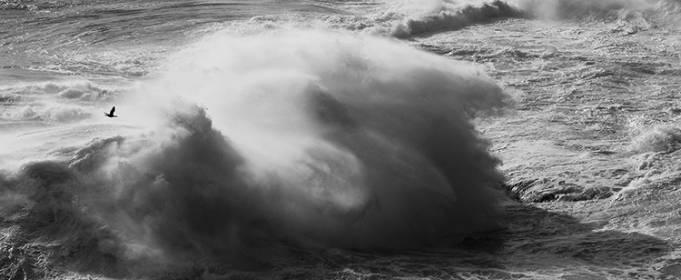 В Атлантике в этом году зафиксировали рекордное количество ураганов