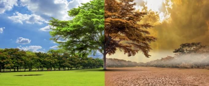 Изменение климата не остановилось из-за COVID-19