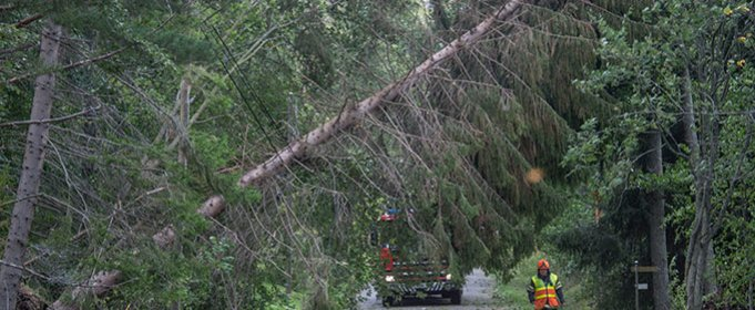 Сильный шторм принес в Финляндию разрушительные ветры и проливные дожди