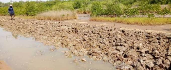 Десятки тысяч человек пострадали от наводнения в Гвинее