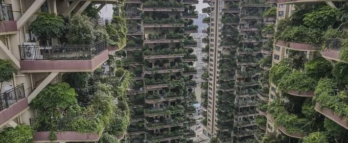 Комары заставили людей покинуть целый жилой комплекс в Китае