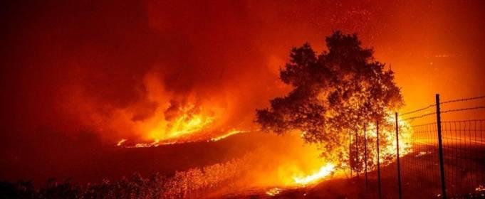 Возле Лос-Анджелеса горит 42 тысячи гектаров леса