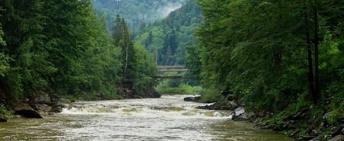 Из-за ливней реки в Карпатах могут выйти из берегов