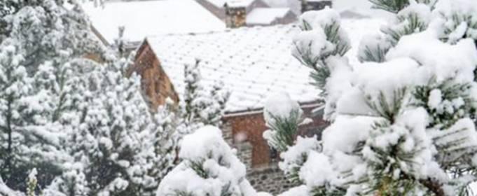 В северном полушарии в горах выпал ранний снег