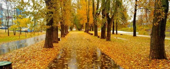 Погода в Україні на вівторок, 29 вересня