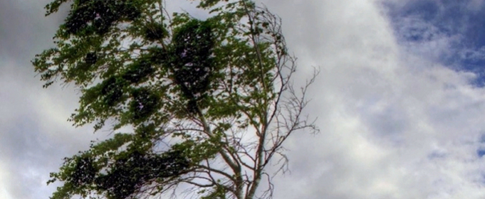 В Украине предупредили про сильные дожди и порывы ветра