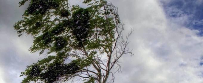 В Україні попередили про сильні дощі та пориви вітру