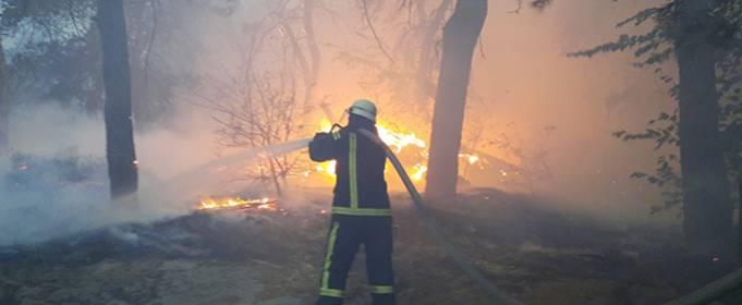 Пожары в Луганской области: количество жертв возросло до девяти