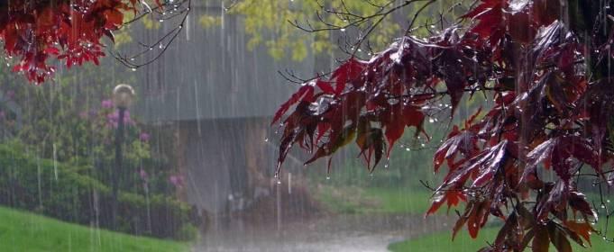 В Украине бушует непогода: есть первые пострадавшие