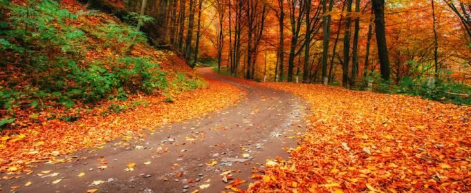 Погода в Україні на неділю, 4 жовтня
