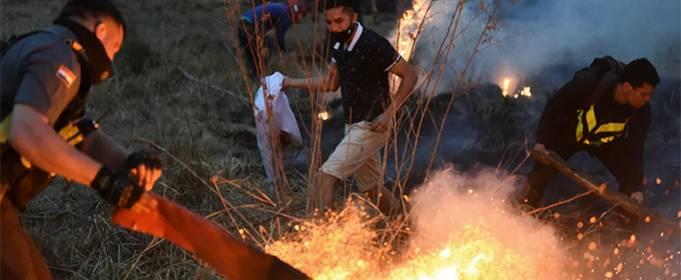 В Парагвае в условиях рекордной жары вспыхнули лесные пожары