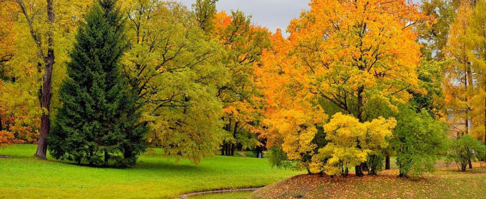 Погода в Україні на п'ятницю, 9 жовтня